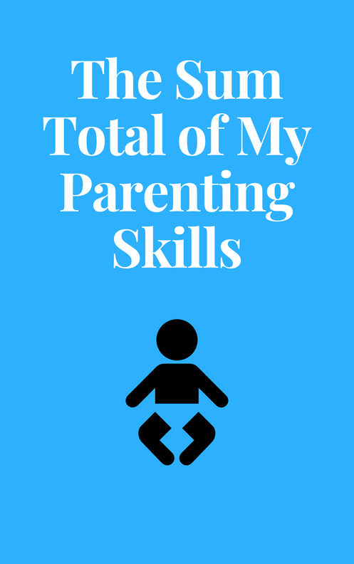 The Sum total of my parenting skills 5x8 100 cover
